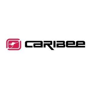 caribee hi def jpg